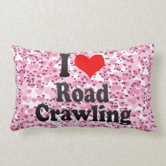 I love Road Crawling Throw Pillows
