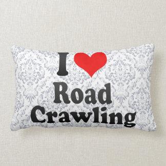I love Road Crawling Pillows