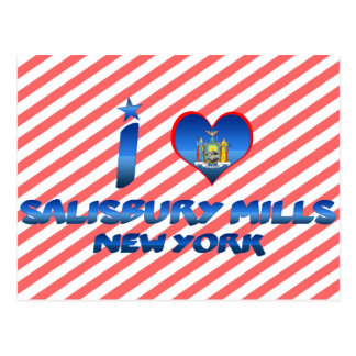 I love Salisbury Mills, New York Postcard