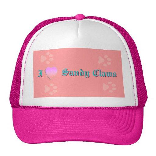 I LOVE Sandy Claws Mesh Hats