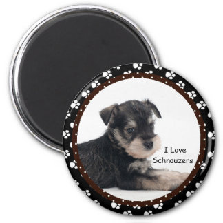 I love Schnauzers  Magnet
