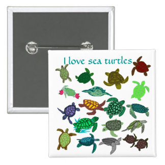 I love sea turtles button