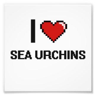 I love Sea Urchins Digital Design Photo