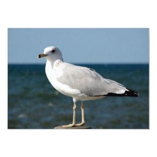 I love Seagulls! 13 Cm X 18 Cm Invitation Card