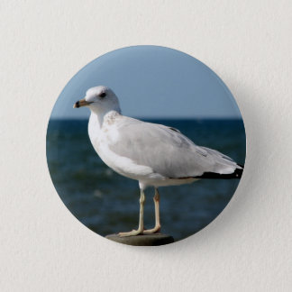I love Seagulls! 6 Cm Round Badge