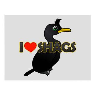 I Love Shags Postcard