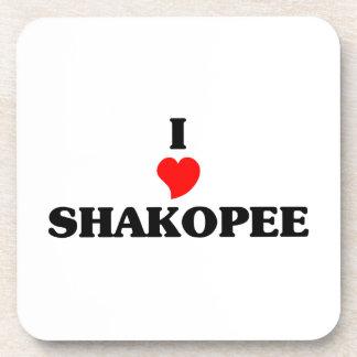 I love Shakopee Coaster