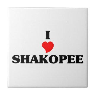 I love Shakopee Small Square Tile