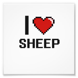 I love Sheep Digital Design Photo