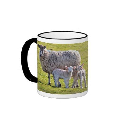 I Love Sheep mug, featuring 2 cute lambs