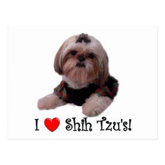 I Love Shih Tzu Postcard