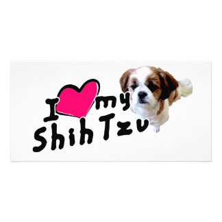 I love Shih Tzus! Personalized Photo Card