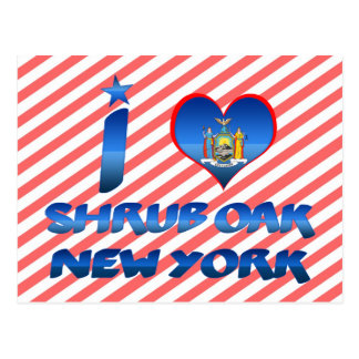 I love Shrub Oak, New York Post Card