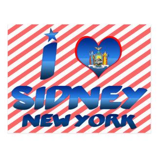 I love Sidney, New York Postcards