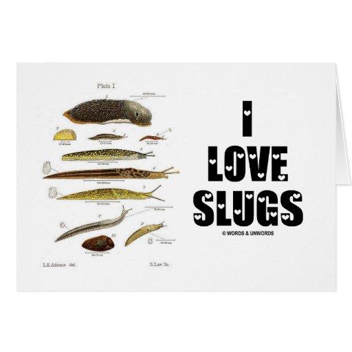 I Love Slugs (Naturalist / Nature) Greeting Cards