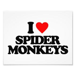 I LOVE SPIDER MONKEYS PHOTOGRAPH