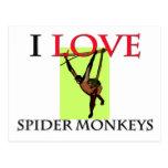 I Love Spider Monkeys Postcards
