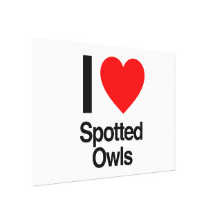 i love spotted owls stretched canvas prints