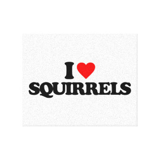 I LOVE SQUIRRELS STRETCHED CANVAS PRINTS