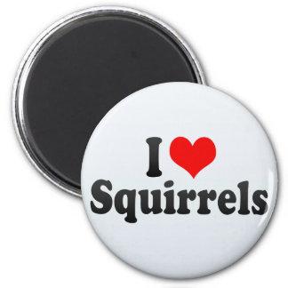 I Love Squirrels Magnet