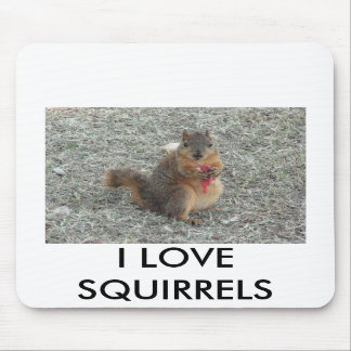 I LOVE SQUIRRELS MOUSEPADS