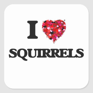 I love Squirrels Square Sticker