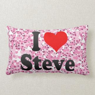 I love Steve Pillows
