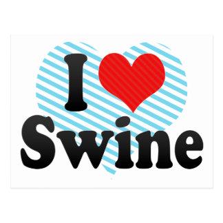 I Love Swine Post Cards