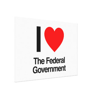 i love the federal government canvas print