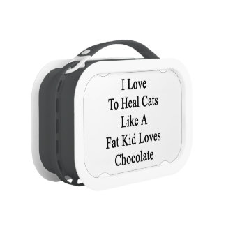 I Love To Heal Cats Like A Fat Kid Loves Chocolate Lunchbox