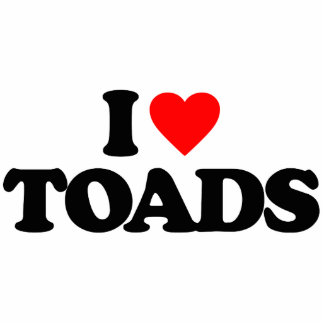 I LOVE TOADS PHOTO SCULPTURE KEY RING