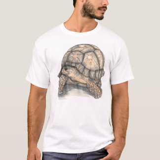 I Love Tortoises T-Shirt