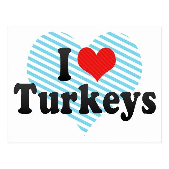 I Love Turkeys Postcard