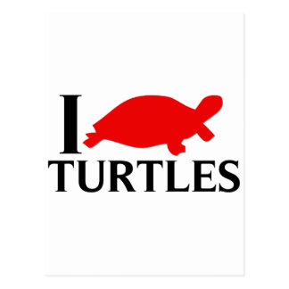 I Love Turtles Postcard