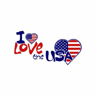 I Love USA American Heart Pin Photo Sculpture Badge