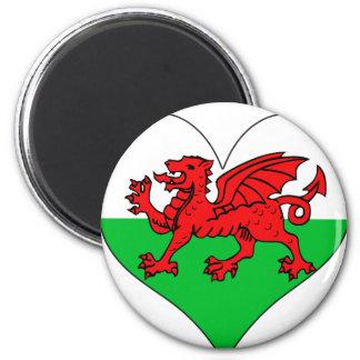 I Love Welsh Fridge Magnet