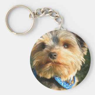 I Love Yorkies Key Ring