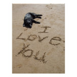 I love you beach and dog poster huge