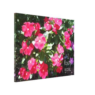 I love you Beautiful Red Periwinkle Flowers Canvas Print