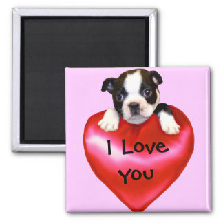 I Love You Boston Terrier magnet
