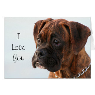 I Love You Boxer Dog greeting card