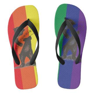 I Love You California--Rainbow Flip Flops