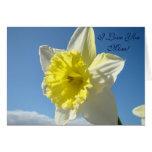 I Love You Mum! Daffodil Flower Spring Blue Sky