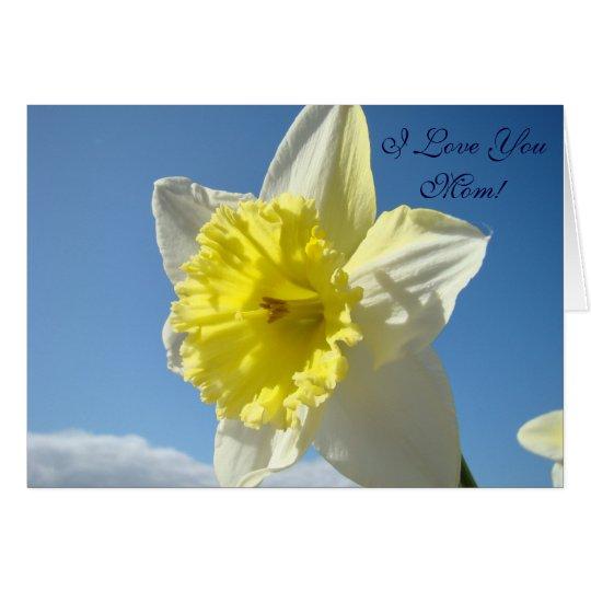 I Love You Mum! Daffodil Flower Spring Blue Sky Card