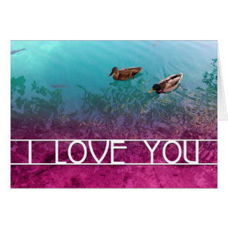i love you : pair of ducks card