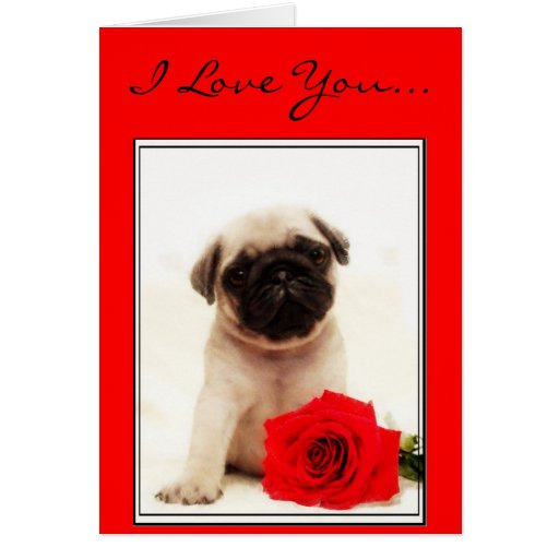 I Love you Pug puppy greeting card