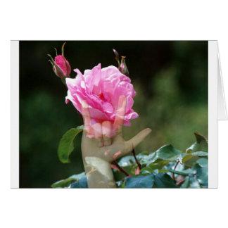 I Love You Rose Card