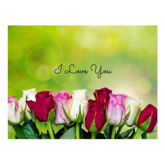 I Love You, Rose Garden Design Postcard
