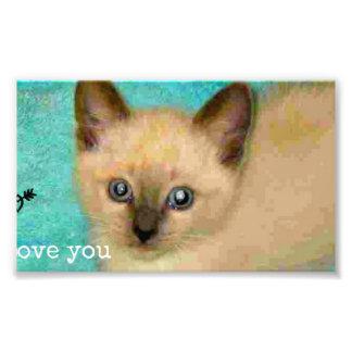 I love you siamese kitten photographic print