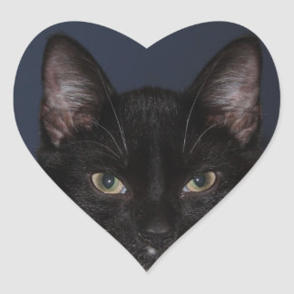 I LUV CATZ HEART STICKER